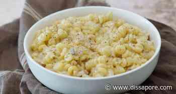 Ricetta pasta gorgonzola e noci, un primo piatto cremoso per un pranzo espresso - dissapore