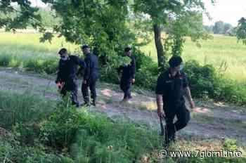 Maxi operazione antidroga: un arresto a San Giuliano Milanese - 7giorni
