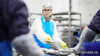 L'emploi moins touché en Gaspésie–Îles-de-la-Madeleine qu'ailleurs dans l'Est-du-Québec | Coronavirus - ICI.Radio-Canada.ca