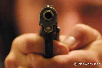 Santa Lucia di Serino, con la pistola nel seggio elettorale: pena ridotta in Appello - The Wam.net