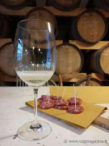 Degustare un bicchier di vino, azienda Corbucci a Gambassi Terme - VdgMagazine