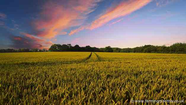 UK Agricultural Finance continues to lend