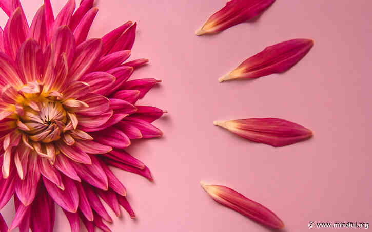 A Guided Loving-Kindness Meditation with Sharon Salzberg