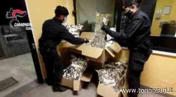 ORBASSANO - Traffico internazionale di droga: arrestati con 30 chili di marijuana nel tir francese - TorinoSud