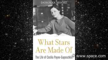 Book excerpt: 'What Stars Are Made Of' (Harvard University Press, 2020)
