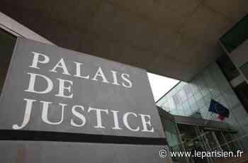 Argenteuil : le fils alcoolique de 46 ans frappait sa mère de 75 ans à coups de canne - Le Parisien