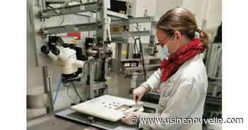 [Covid-19] Trixell double sa production de détecteurs radiologiques à Moirans - Quotidien des Usines - L'Usine Nouvelle