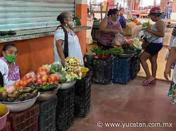 La mandarina, el cítrico con mejor precio en mercados de Oxkutzcab - El Diario de Yucatán