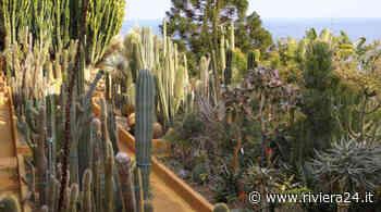 Bordighera, riapre il Giardino Esotico Pallanca - Riviera24