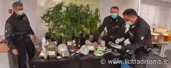 A Lissone scoperto un laboratorio clandestino per produrre droga: arrestato un incensurato - Il Cittadino di Monza e Brianza