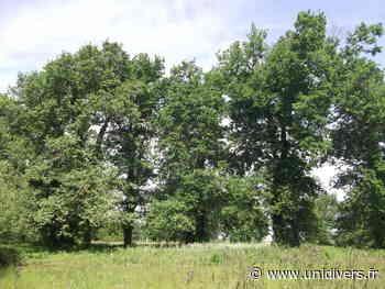 Sortie grand public « Les arbres, ça me branche » Bretagne Vivante Bouguenais 16 mai 2020 - Unidivers