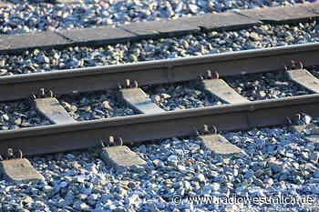Baum blockiert Bahnstrecke in Bad Oeynhausen - Radio Westfalica