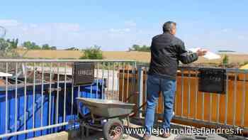 Service : Wormhout : la déchetterie rouvre au public avec de nouvelles règles - Le Journal des Flandres