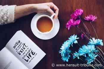AGDE - Vous reprendrez bien un peu de Café-Philo ? Un 2ème rendez-vous proposé le 19 mai ! - Hérault-Tribune