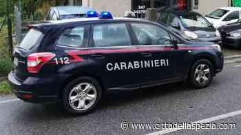 Tre pusher dei boschi arrestati dai carabinieri di Sarzana in una settimana - Città della Spezia