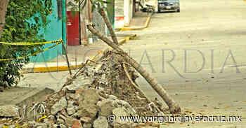 Escurrimientos de agua de la CAEV causa daños en casas, en Coatzintla - Vanguardia de Veracruz