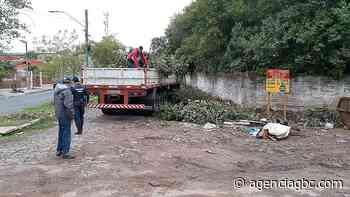Guarda Municipal de Esteio flagra caminhão com IPVA vencido descartando lixo irregular - Agência GBC
