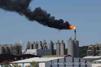 Lillebonne. ExxonMobil : l'unité de polypropylène à l'arrêt à cause d'un incident - Le Courrier Cauchois