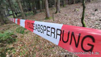 Neustadt an der Donau/ Kehlheim: Hobbyschatzsucher finden Knochen und Kampfflugzeugteile aus Zweitem Weltkrieg | Bayern - rosenheim24.de