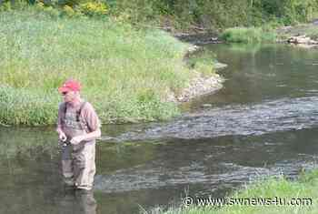 Healthy trout fisheries rely on cold, clean groundwater - Swnews4u