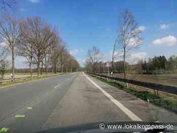 Sanierung der L608: Einbahnstraße zwischen Klein-Reken und Bahnhof Reken ab Montag - Lokalkompass.de