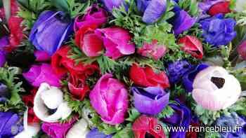 La relance éco : à Orange, la jardinerie Florivie mise sur la saison qui n'est pas encore terminée - France Bleu