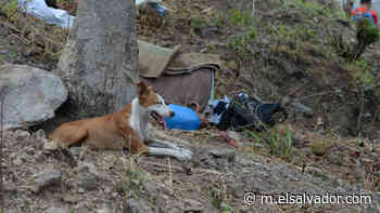 Fiscalía confirma hallazgo de cadáver de niño en Guatajiagua y sus restos devorados por aves de rapiña - elsalvador.com