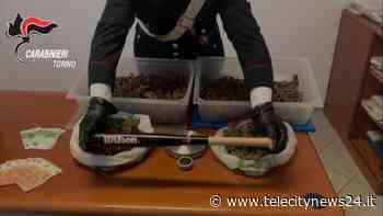 """Volpiano (TO): carabinieri individuano """"e-commerce della marijuana"""" - Telecity News 24"""