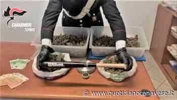 VOLPIANO - 28enne vende la droga su Whatsapp: arrestato dai carabinieri di Leini. In casa più di due chili di marijuana - VIDEO - QC QuotidianoCanavese