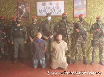 Capturados otros dos mercenarios en la Colonia Tovar - Últimas Noticias