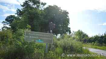 Les forêts de Clairmarais, Tournehem-sur-la-Hem et Éperlecques rouvertes à la population - La Voix du Nord