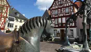 Museum in Alzey hat wieder geöffnet   BoostyourCity - Aktuelle Nachrichten aus deiner Region - Boost your City
