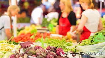 Pomezia, riaprono i mercati settimanali di Campo Ascolano e Torvaianica - IlFaroOnline.it