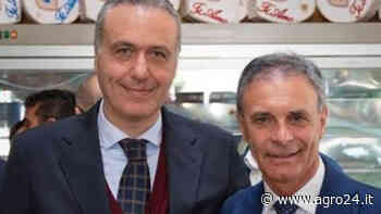 Scafati. La spaccatura in Fratelli D'Italia, tra deleghe e incarichi. E il 20 torna il Consiglio - Agro24