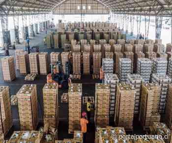 Ecuador impulsa exportación de bananos a través de Puerto Simón Bolívar - PortalPortuario