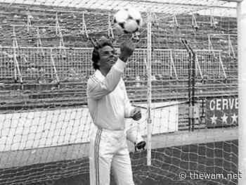 Iglesias, Osvaldo e come cantava bene Pelé: calciatori col pallino della musica - The Wam.net