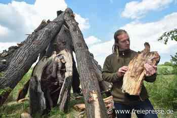 Warum in Ebersdorf eine Pyramide aus Totholz steht - Freie Presse