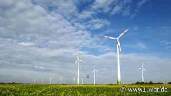 Ärger in Borchen über Genehmigungen weiterer Windräder - WDR Nachrichten