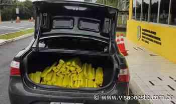 Traficante de Itapevi que transportava 300 kg de maconha é preso no Paraná - Portal Visão Oeste