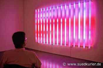 Singen: Erste Museen sind wieder geöffnet: In Singen und Engen werden aktuelle Ausstellungen verlängert - SÜDKURIER Online