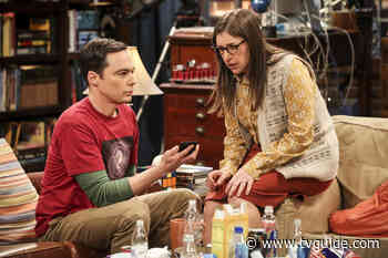 The Big Bang Theory's Jim Parsons and Mayim Bialik's Comedy Call Me Kat Is a Go at Fox - TV Guide