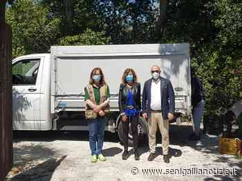 Falconara Marittima, appello del sindaco Signorini a sostegno del Parco Zoo - Senigallia Notizie