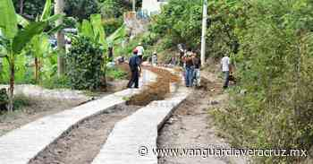 Se avanza en mejoramiento de caminos en Tlapacoyan - Vanguardia de Veracruz