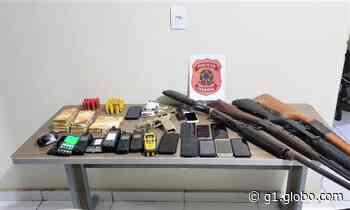 Polícia Federal fiscaliza garimpo ilegal e apreende armas e drogas em Itaituba, no Pará - G1