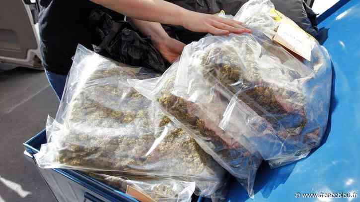 À Bagnolet, 64 kilos de cannabis et 385 000 euros saisis dans un appartement - France Bleu