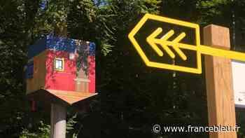 Déconfinement : la forêt monumentale de Bois-Guillaume retrouve ses promeneurs ce week-end - France Bleu