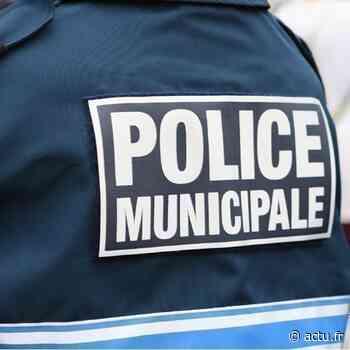 Seine-et-Marne. Un policier municipal de Lognes décède dans l'exercice de ses fonctions - actu.fr