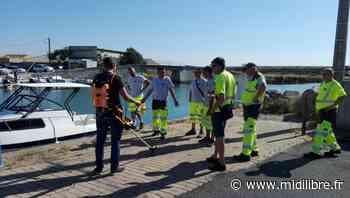 Frontignan : la campagne de désherbage se poursuit - Midi Libre
