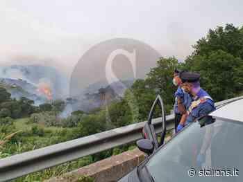 Roghi sulla costa tirrenica, ora le fiamme divampano a Massa Santa Lucia - Sicilians