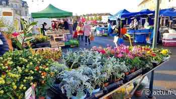 À Gisors (Eure), le marché reprend bien ce vendredi 15 mai avec avec des aménagements spécifiques - Normandie Actu